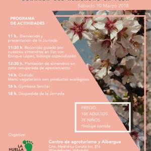 Jornada del almendro en flor